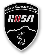 Badge_BUSA_goldig