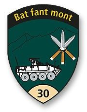 Badge Geb Inf Bat 30